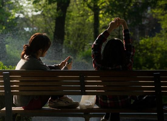 bench-384611_1280